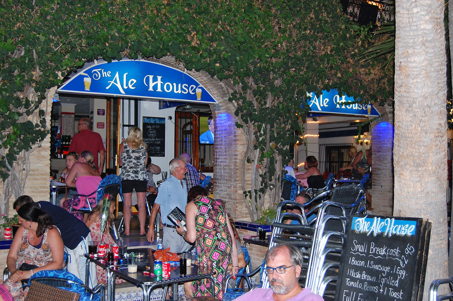 The Ale House Villamartin Plaza